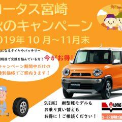 ロータス宮崎秋のキャンペーン開催中です