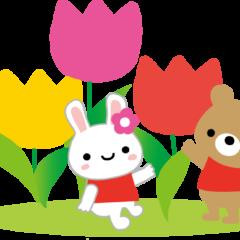 春のロータスキャンペーンご利用ありがとうございます。